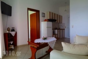 Spiros Studios_best prices_in_Hotel_Epirus_Preveza_Parga