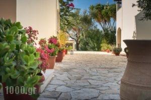 Olga Studios_best deals_Hotel_Ionian Islands_Zakinthos_Zakinthos Chora