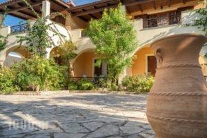 Olga Studios_accommodation_in_Hotel_Ionian Islands_Zakinthos_Zakinthos Chora