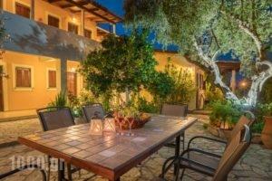 Olga Studios_best prices_in_Hotel_Ionian Islands_Zakinthos_Zakinthos Chora