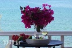 Roussos Beach Hotel in Paros Chora, Paros, Cyclades Islands