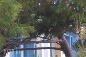 Ostria_best prices_in_Hotel_Cyclades Islands_Anafi_Anafi Chora