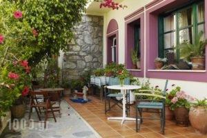 Apollon Hotel_holidays_in_Hotel_Cyclades Islands_Naxos_Naxos Chora