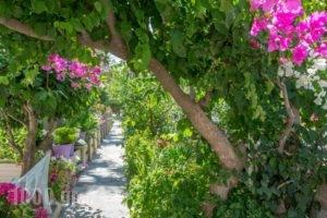 Missiria Apartments_best prices_in_Apartment_Crete_Rethymnon_Rethymnon City