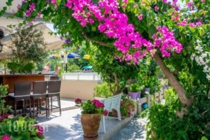 Missiria Apartments_lowest prices_in_Apartment_Crete_Rethymnon_Rethymnon City