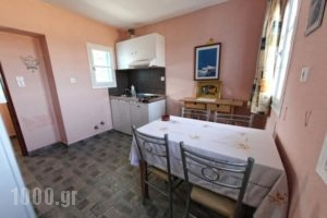 Papantonis Studios_holidays_in_Hotel_Cyclades Islands_Sifnos_Sifnos Chora
