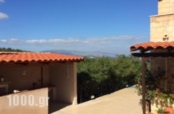 Villa Elina in Platanias, Chania, Crete