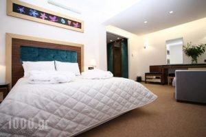 Dovitel Boutique Hotel_best deals_Hotel_Epirus_Ioannina_Ioannina City