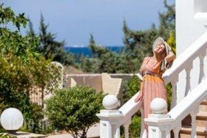 Villa Alyko_best prices_in_Villa_Cyclades Islands_Ios_Ios Chora