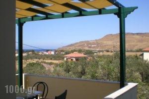 Vasiliki Studios_best deals_Hotel_Aegean Islands_Lesvos_Petra