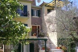 Vasiliki Studios_accommodation_in_Hotel_Aegean Islands_Lesvos_Petra