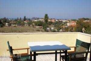 Vasiliki Studios_best prices_in_Hotel_Aegean Islands_Lesvos_Petra