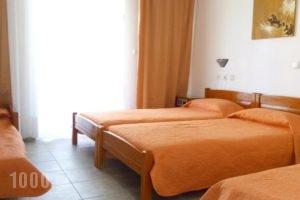 Victor Eleni Hotel_travel_packages_in_Macedonia_Halkidiki_Haniotis - Chaniotis