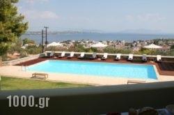 Xenon Estate in Spetses Chora, Spetses, Piraeus Islands - Trizonia