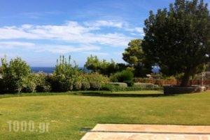 Xenon Estate_holidays_in_Hotel_Piraeus Islands - Trizonia_Spetses_Spetses Chora