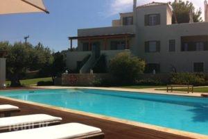 Xenon Estate_best prices_in_Hotel_Piraeus Islands - Trizonia_Spetses_Spetses Chora