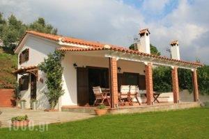 Villa Eleven_accommodation_in_Villa_Sporades Islands_Skiathos_Skiathoshora