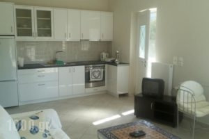 Michelakis Apartments_best deals_Apartment_Crete_Lasithi_Sitia