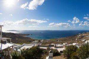 Villa Ellis Mar_holidays_in_Villa_Cyclades Islands_Mykonos_Agios Stefanos