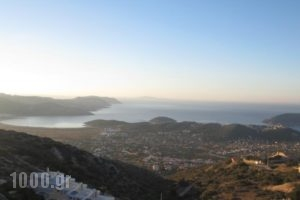 Viva B&B_lowest prices_in_Hotel_Central Greece_Attica_Anabyssos