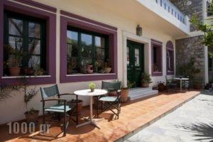 Apollon Hotel_best deals_Hotel_Cyclades Islands_Naxos_Naxos Chora