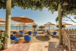 Dafni Villas & Maisonettes_travel_packages_in_Ionian Islands_Zakinthos_Zakinthos Chora