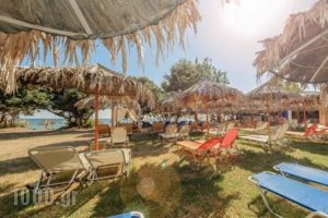 Dafni Villas & Maisonettes_best deals_Villa_Ionian Islands_Zakinthos_Zakinthos Chora