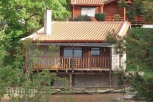 Tetrapolis_accommodation_in_Hotel_Central Greece_Fokida_Amfissa