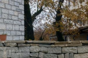 Stis Giagias Evgenias_holidays_in_Hotel_Epirus_Ioannina_Papiggo
