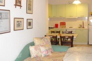 Villa Forestata_best prices_in_Villa_Ionian Islands_Kefalonia_Kefalonia'st Areas