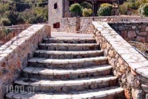 Menalia Villas & Suites_best deals_Villa_Peloponesse_Arcadia_Levidi