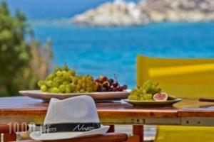 Ydreos Studios & Apartments_accommodation_in_Apartment_Cyclades Islands_Naxos_Mikri Vigla