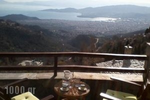Gioula's House_holidays_in_Hotel_Thessaly_Magnesia_Agios Lavrendios