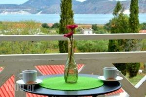 Villa Reverenza_accommodation_in_Villa_Ionian Islands_Kefalonia_Kefalonia'st Areas