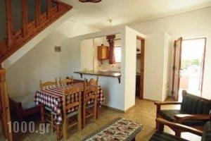 Villa Rosa Apartments_accommodation_in_Villa_Crete_Chania_Stavros