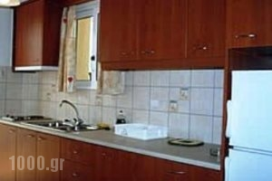 Tzanetos Studios_accommodation_in_Room_Ionian Islands_Zakinthos_Laganas