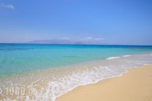 Maria'S Rooms & Studios_travel_packages_in_Cyclades Islands_Naxos_Naxos chora