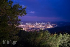 Valeni Boutique Hotel & Spa_lowest prices_in_Hotel_Thessaly_Magnesia_Ano Volos