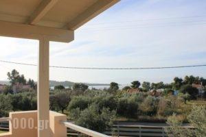 Light Blue Villa_holidays_in_Villa_Peloponesse_Argolida_Kranidi