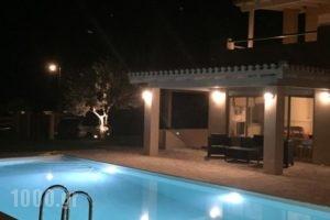 Light Blue Villa_travel_packages_in_Peloponesse_Argolida_Kranidi