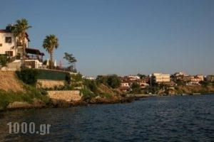 Villa Chara_travel_packages_in_Macedonia_Halkidiki_Chalkidiki Area