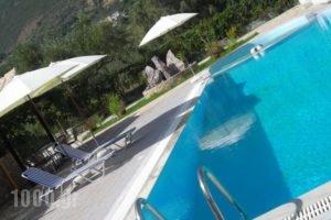 Fotini Studios_holidays_in_Hotel_Ionian Islands_Lefkada_Vasiliki