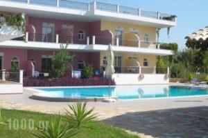 Fotini Studios_accommodation_in_Hotel_Ionian Islands_Lefkada_Vasiliki