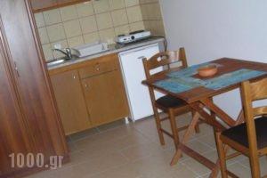 Fotini Studios_best deals_Hotel_Ionian Islands_Lefkada_Vasiliki