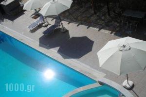 Fotini Studios_lowest prices_in_Hotel_Ionian Islands_Lefkada_Vasiliki