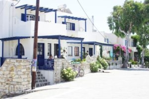 Free Sun Rooms And Apartments_best deals_Room_Cyclades Islands_Paros_Paros Chora