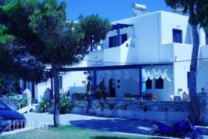 Free Sun Rooms And Apartments_best prices_in_Room_Cyclades Islands_Paros_Paros Chora