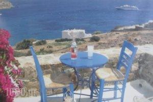 Meletis Studios_holidays_in_Hotel_Cyclades Islands_Paros_Paros Chora