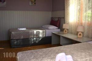 Villa Theodosia_accommodation_in_Villa_Crete_Chania_Agia Marina