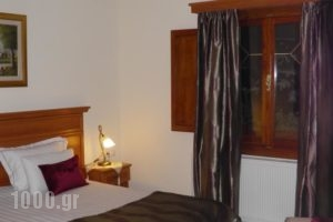 Egnatia_accommodation_in_Hotel_Epirus_Ioannina_Metsovo